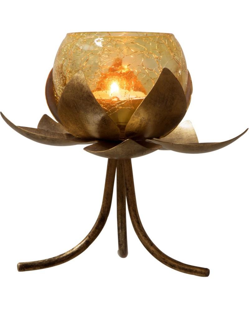 """porte-t-lumière permanent Lotus SUPPORT-OR 6""""""""HX5.5""""""""DI"""