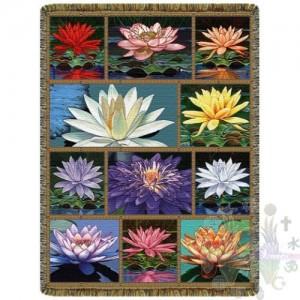 Jeter lotus collage